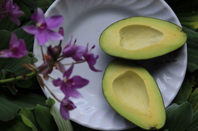 avocado nutrition facts